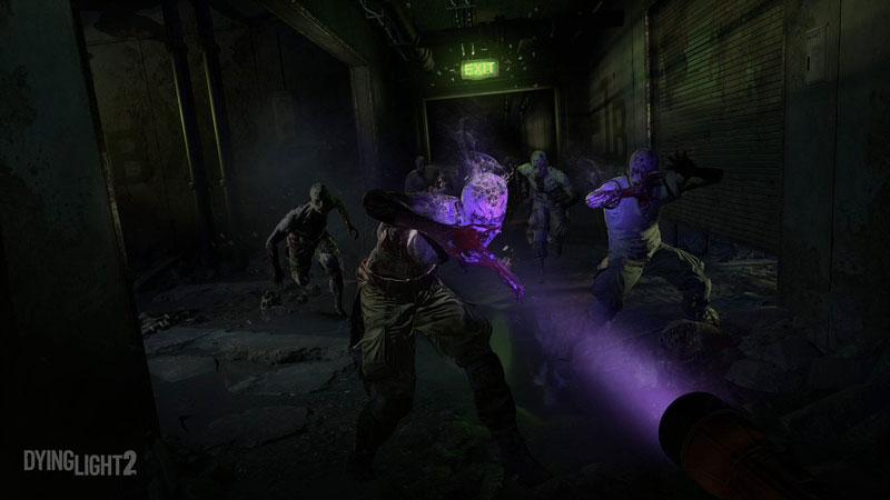 Dying Light 2 Stay Human Deluxe Steelbook Edition  PS4  дополнительное изображение 4