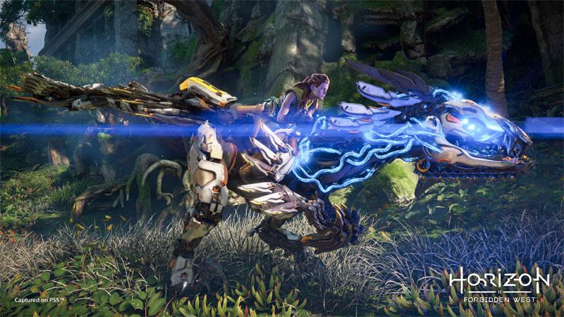 Horizon Запретный Запад Forbidden West PS4  дополнительное изображение 3