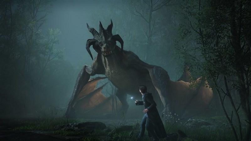 Hogwarts Legacy  PS5  дополнительное изображение 1