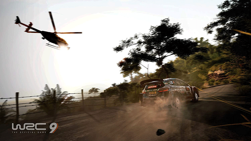 WRC 9  PS5 дополнительное изображение 2